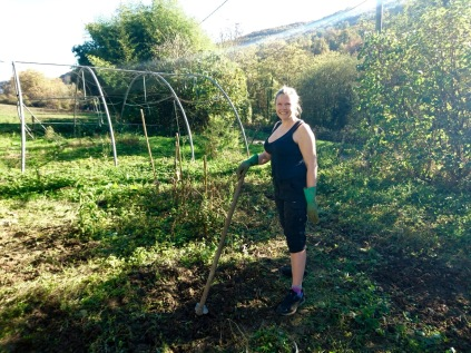 Working hard on the organic vegetable patch